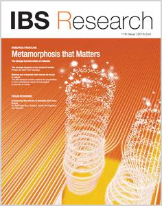IBS Research 11th