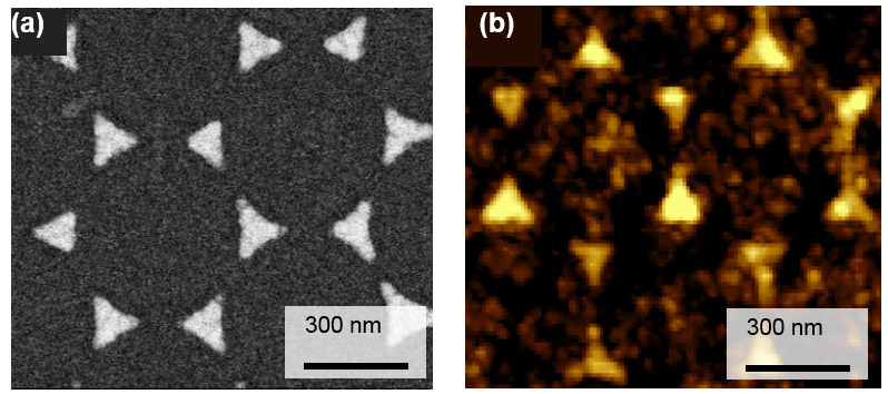 금 나노프리즘의 현미경 이미지. 삼각형 형태의 금 나노프리즘 내부에 비해 경계면에서 핫전자가 13배 활발히 발생한다.