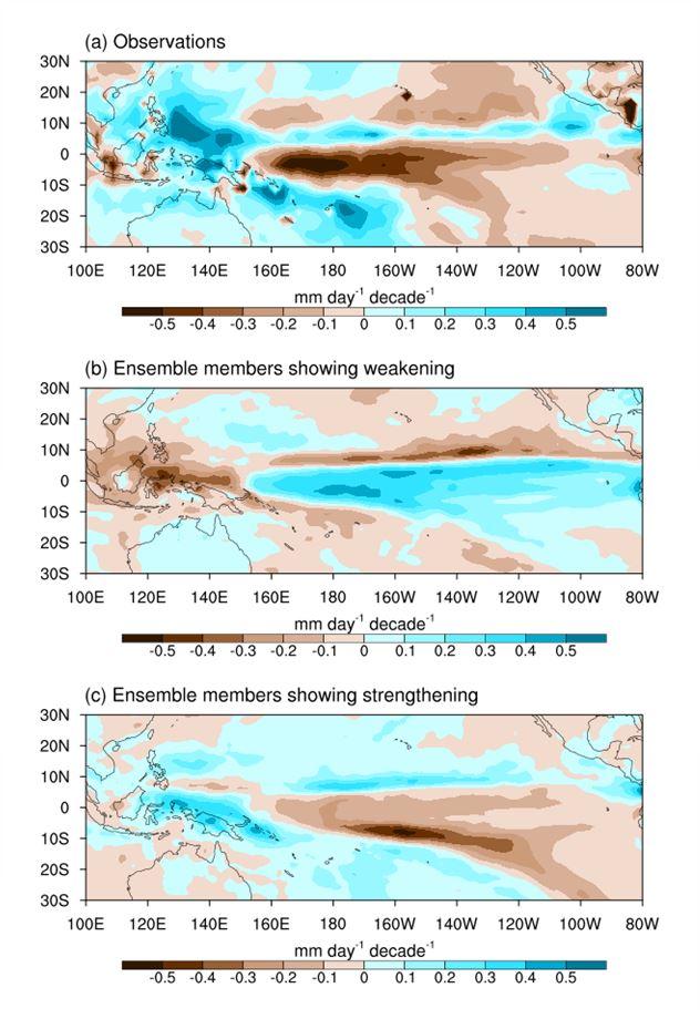연구진은 위성 관측자료와 최적화된 기후모델을 이용해 워커순환의 강화 경향의 원인을 파악했다. 그림(a)는 위성관측으로부터 도출된 변화로 외부요인의 영향과 자연변동성의 영향이 함께 포함되어 있다. 그림(b)와 그림(c)는 워커순환의 약화와 워커순환의 강화를 각각 표현하는데 두 그림은 동일한 외부 조건이 주어졌음에도 상반된 공간 분포를 보였다. 특히 그림(c)는 태평양 지역에서 위성 관측에 부합하는 공간 분포를 보이는데, 이는 워커순환의 변화에 더 큰 영향을 미친 것은 기후시스템 내 자연 변동성임을 보여주는 것을 의미한다.