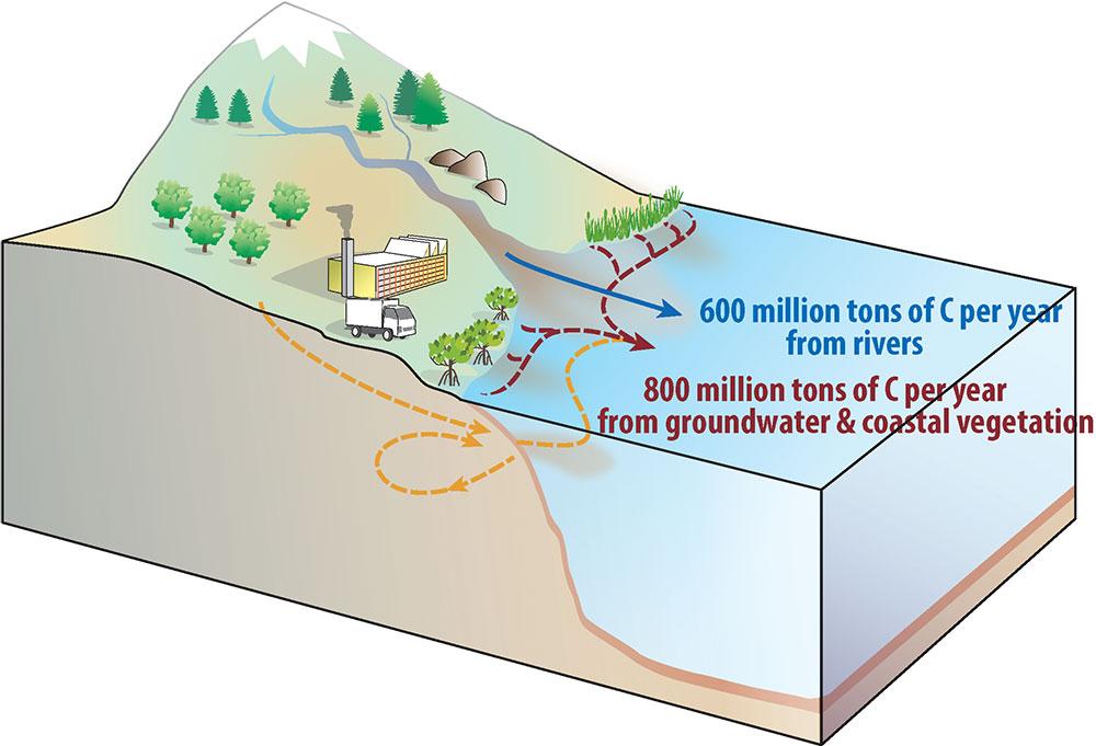 Figura esquemática que mostra as novas estimativas de transporte de carbono em rios, águas subterrâneas e ecossistemas costeiros da terra para o oceano