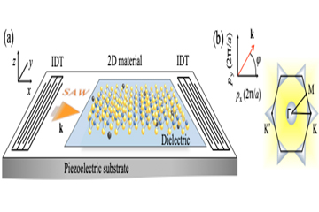 Unconventional phenomena triggered by acoustic waves in 2D materials