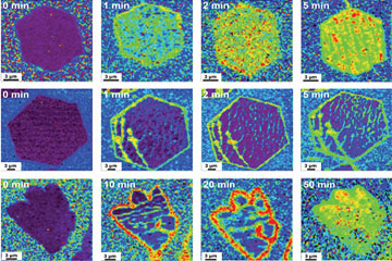 Compressive stress in single crystal graphene drives chemistry on the graphene surface