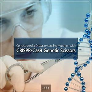 Correction of a Disease-causing Mutation with CRISPR-Cas9 Genetic Scissors