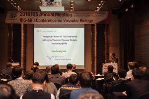 IBS-MPI Conference on Vascular Biology