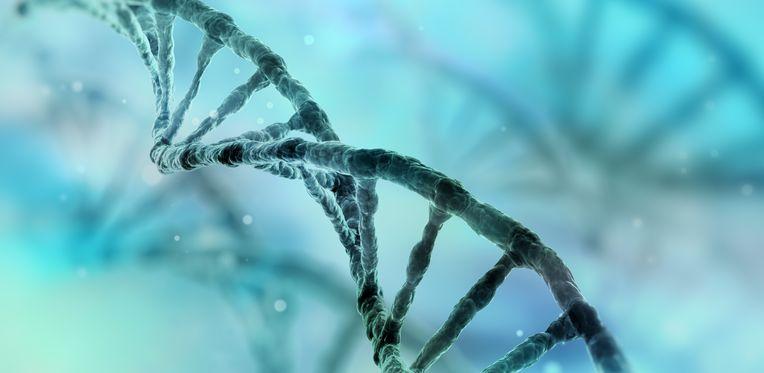 RNA 그래픽