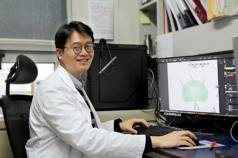 Researcher Lee at the Center for Vascular Research is a man of many talents who carries out cancer research but also has a knack for illustration.