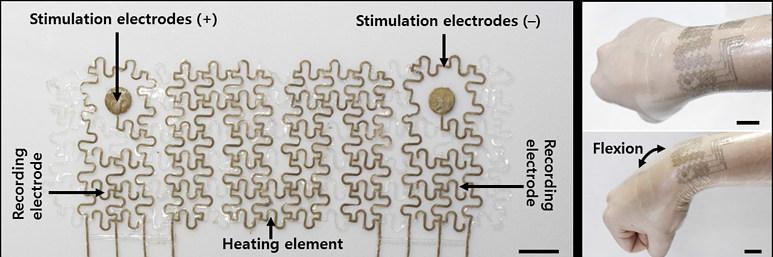 IBS가 개발한 '피부 부착형 웨어러블 의료용 전자패치'는 높은 전도도와 신축성을 동시에 가지는 전도체를 개발하고, 다양한 바이오메디컬 디바이스로의 활용가능성을 제시했다.