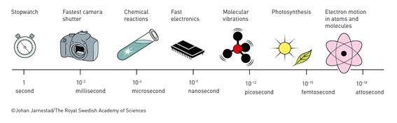 1펨토초는 식물이 광합성을 하는 데 걸리는 시간으로, 우리에게 익숙한 1초보다 1000조 배나 짧은 순간이다. (사진 : 노벨상위원회)