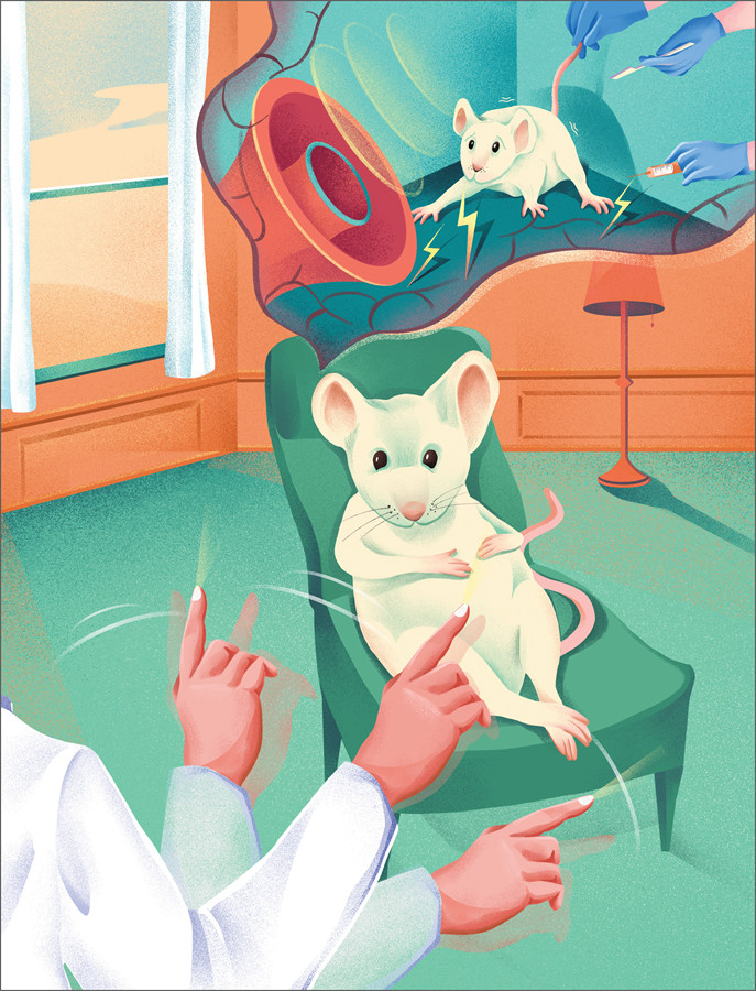 트라우마 기억을 가진 생쥐 모델을 이용해 양측성 자극이 동반될 경우, 공포반응이 효과적으로 감소한다는 사실을 입증한 IBS의 이번 연구를 한 눈에 보여주는 이미지(제공 제니곽 일러스트레이터).