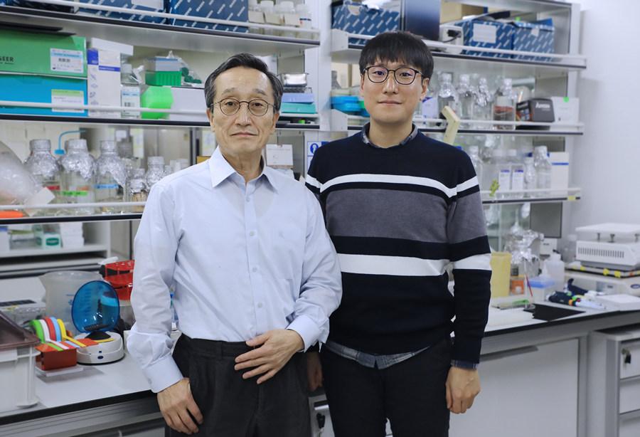 이번 연구를 이끈 교신저자 신희섭 단장(왼쪽)과 제1저자인 백진희 연구원(오른쪽). 백진희 연구원은 이번에 밝힌 새로운 신경회로의 특성을 더 자세하게 밝혀 실질적인 치료법 개선에 도움이 되는 연구를 할 계획이라고 밝혔다.