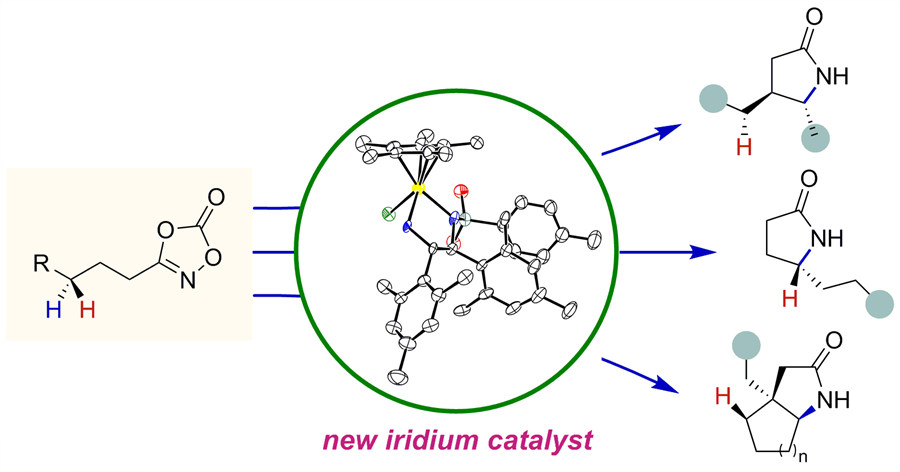 Figure 3 Selective amidation reaction using the new iridium catalysts. A group of chiral lactams in different shapes produced from inexpensive and readily available feedstock hydrocarbons. Their diverse structures allow lactams to correspond to different pharmaceutical drugs