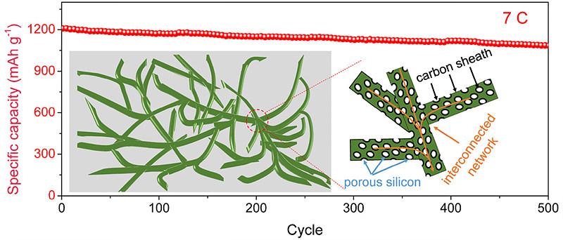 연구진이 새로 개발한 전극의 구조. 다공성 실리콘 나노와이어를 산호 모양처럼 이어 붙여 만든다. (출처: ACS Nano)