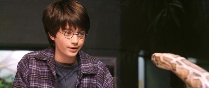 영화 <해리포터와 마법사의 돌>에서 뱀과 대화하는 해리. (출처 : 워너브라더스)