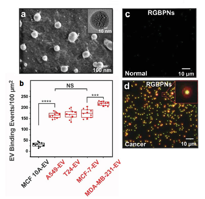 그림 2. 혈소판 칩 성능과 암환자 대조군 비교