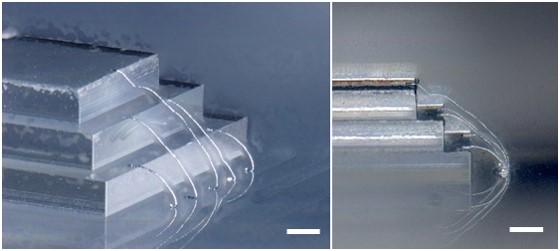 단차가 있는 칩 형태에 3D 프린팅 된 금속 복합체의 3차원 구조.