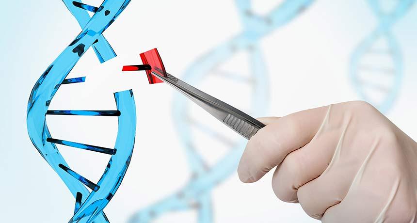 DNA 염기 하나만 콕 집어 바꾸는 유전자가위 (출처 : andriano_cz/istock.com)