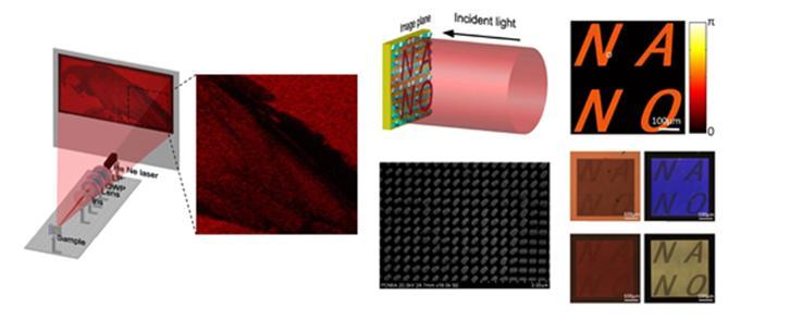 노준석 포항공과대학교(POSTECH) 교수팀이 개발한 실리콘 기반 메타홀로그램의 모식도. 레이저뿐만 아니라 할로겐 전등, 휴대폰 플래쉬, 자연광에서도 선명한 영상을 구현한다. (출처: ACS Nano)