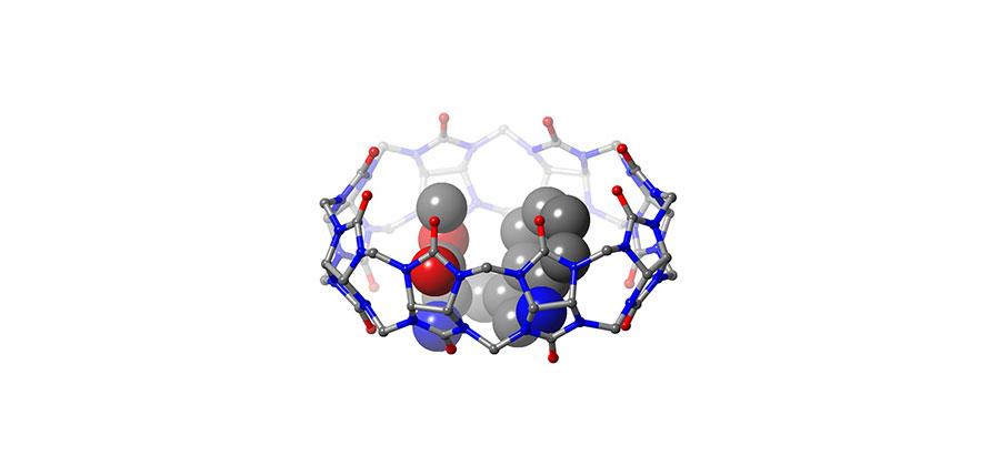 쿠커비투릴 분자가 트립토판 유도체와 결합해 이룬 결정의 구조.