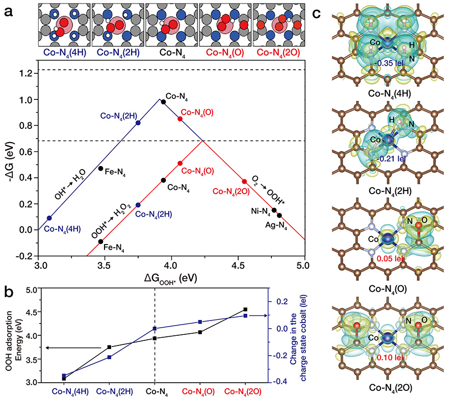Figure 2. Atomic-level tuning of Co-N4/graphene catalyst. Cobalt atoms are coordinated with four nitrogen atoms forming square planar Co-N4 structure on nitrogen-doped graphene (Co-N4/graphene). Researchers could control the charge state of cobalt atoms by introducing electron-rich (for example, oxygen) or electron-poor (for example, hydrogen) atoms near the Co-N4 structure. Specifically, when electron-rich oxygen atoms were near Co-N4 (Co-N4(O)), the charge state of cobalt atoms slightly decreased becoming electron-poor cobalt which exhibited significant enhancement on electrochemical H2O2 production. Conversely, when electron-rich hydrogen atoms were near the Co-N4 structure, Co-N4 (2H), cobalt atom became electron-rich making it less favorable for H2O2 production.