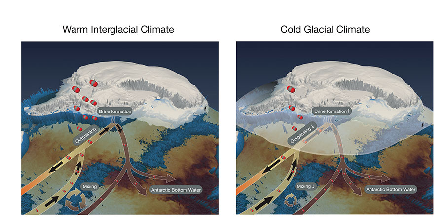 Schematic of Southern Ocean sea ice processes that effect the exchange of carbon between the atmosphere and ocean.