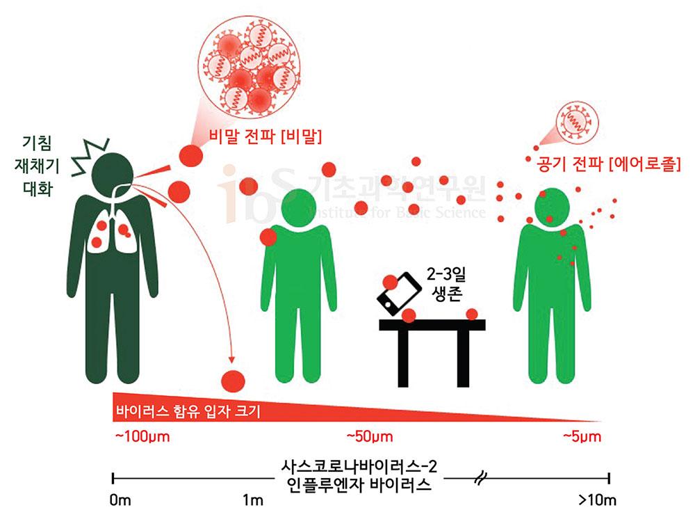 바이러스를 함유하는 입자는 크기에 따라 비말 혹은 에어로졸로 분류할 수 있다. 비말은 중력에 의해 2m 이내의 거리에 대부분 떨어지지만, 에어로졸은 상대적으로 더 멀리 이동한다. [그림: 김혜원]