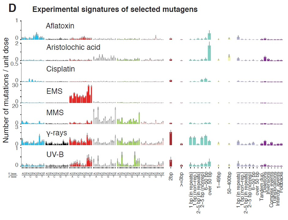 Figure 1 Exposure to various mutagenic agents causes distinct mutational profiles