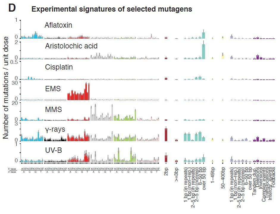 Figure 1 Exposure to various mutagenic agents causes distinct mutational profiles