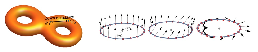 Figure 2 (Left) A cartoon representing the geometric structure of the Bloch states. The quantum distance measures the quantum mechanical distance between two Bloch wave functions. (Right) Bloch wave functions of the flat band can be represented by the pseudo-spin (arrows). The relative angle between two pseudo-spins corresponds to the quantum distance between the relevant Bloch states.