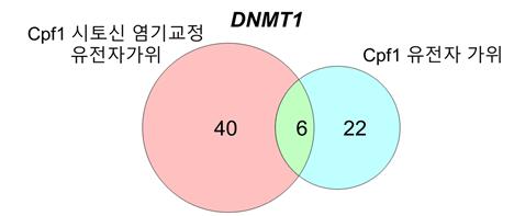 그림 3.  Cpf1 시토신 염기교정 유전자가위와 Cpf1 유전자 가위의 비표적 위치 비교