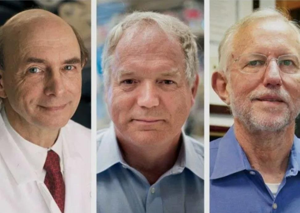 그림 1. 2020 노벨생리의학상 수상자. 좌로부터 하비 알터, 마이클 허튼, 찰스 라이스 박사.
