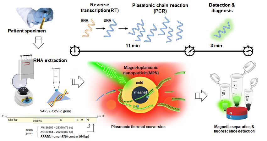 Figure 1. Coronavirus diagnosis process using nanoPCR technology