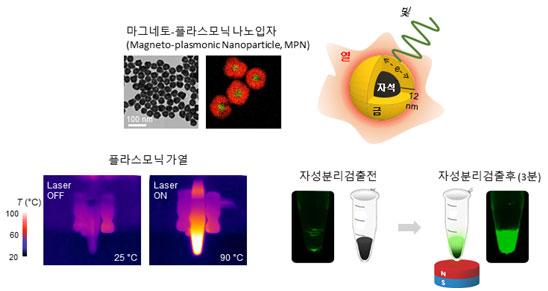 IBS 나노의학 연구단은 플라스모닉물질과 자성물질을 결합한 '마그네토 플라스모닉 나노입자'를 합성하고, 이를 PCR에 접목한 나노PCR 기술을 개발했다. 플라스모닉 효과로 인해 유전물질을 빠르게 증폭하는 동시에 자기력을 이용해 샘플을 분리할 수 있다.