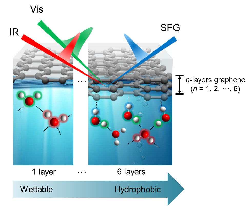 Figure 3. Hydrogen bond structure of water molecules at the graphene-water interface observed by VSFG
