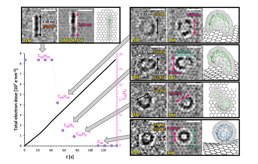 Figure 2. TEM, simulation, and model images of intermediates that were identified during the course of the reaction.