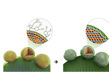 IBS Reports a High Performance Nanoparticle Electrocatalyst