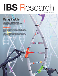 IBS Research 6th issue